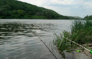 Места для рыбалки в воронеже