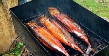 Сколько времени коптится рыба горячего копчения фото